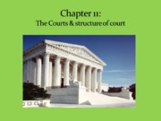 Ch 11 The Courts  (Pena)