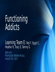 Functioning Addicts (1).pptx