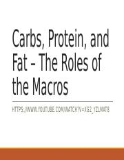 #8 Carbs proteins fats - wellness