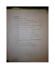 Spanish 3 loco o logico worksheet