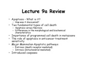Lecture 9b to post 2007