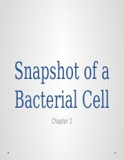 BIOL 2259 Chapter 2 Powerpoint