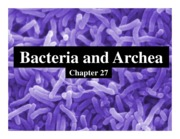 Ch 27 - Bacteria and Archaea (1 slide per page)-1