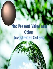 NPV and other Interest Criteria