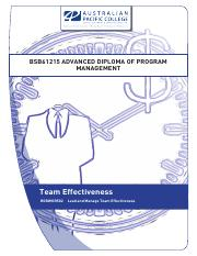 Team Effectiveness_Workbook_v1.3.pdf