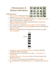 Chromosomes_and_Inheritance_Lecture_Notes
