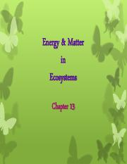 Chapter 13 - Energy and Matter (1).pdf