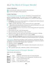 11.1_Workbook.docx - 11.1 The Work of Gregor Mendel Lesson ...