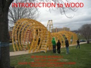 6a.INTRODUCTION TO WOOD 2015.pdf