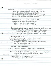 ATR 257 Muscles Notes