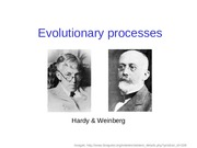 4-Evolutionary_processes.ppt