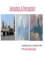 Chapter 6 - Sensation and Perception