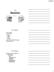 Chapter 7 handouts