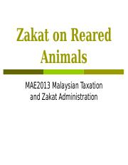 Zakat on Reared Animals.ppt