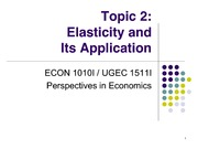 Topic 2. Elasticity and Its Application