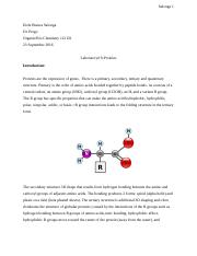 Lab#9-Proteins.docx