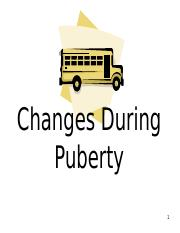 Changes+During+Puberty.ppt
