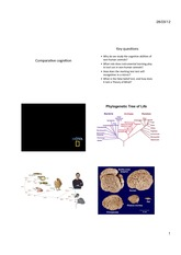 2012 psyc2011 11 comparative cognition.ppt