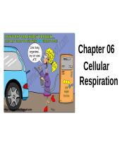 7.  Cellular Respiration (students)