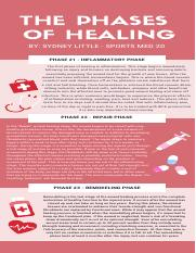 THE PHASES OF HEALING (1).pdf