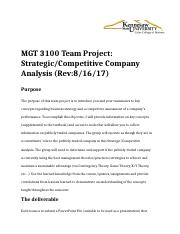 MGT 3100 Team Project Rev 8-16-17 (2).docx