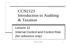 CCN2123_lect 12 internal control and control risk