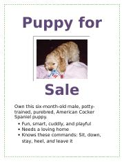 Puppy for Sale.docx