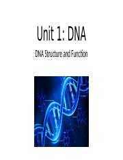 DNA Structure and Function (S)(1) (1).pptx