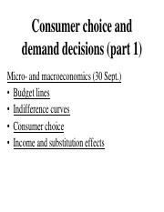 Micro- and macroeconomics - Consumer choice and demand decisions.pdf