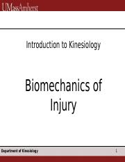 13 Biomechanics Injury