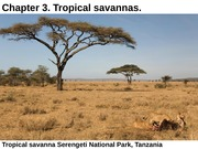 Geography 108 - Tropical Savanna