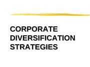 Diversification Strategy Presentation