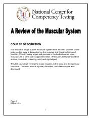A Review of the Muscular System