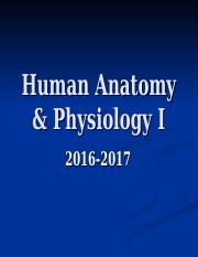 Introduction_to_Anatomy_and_Physiology-_Chapter_1