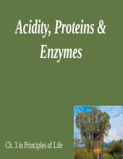 Acidity Proteins and Enzymes (1)