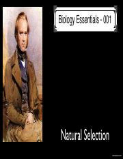 AP+Bio-001+Natural+Selection+KN+PDF.pdf