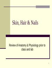 63-166 SkinHairNails background notes to review before class and labs Fall 2015.pptx