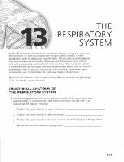A&P Coloring Workbook- The Respiratory System.pdf