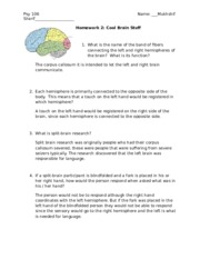 Homework 2 - cool brain stuff shortened