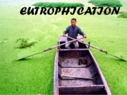 EUTROPHICATION (Presentation)
