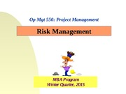 PM Risk Mgt (2015)