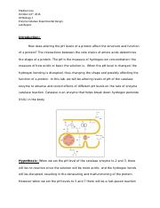 Experimental Design Enzyme Catalase Lab Report (1).docx