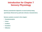 Sensory Physiology Powerpoint - 8:27.ppt