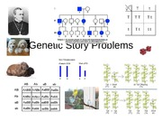 Ch 10 Genetic Story Problems II