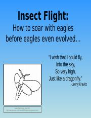 Insect_Flight_9.22.16__notes