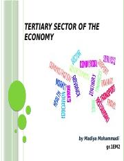 Tertiary sector of ec-my.pptx