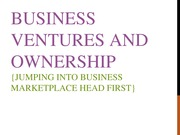 EMIS 3308 -P2 Business Ventures and Ownership
