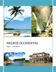 288258631-Negros-Occidental-The-Economic-and-Political-Situation