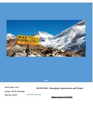 Everest report.docx