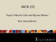 DR MCB 252 Topic 6 Muscle Cells and Myosin Motors Sp2014